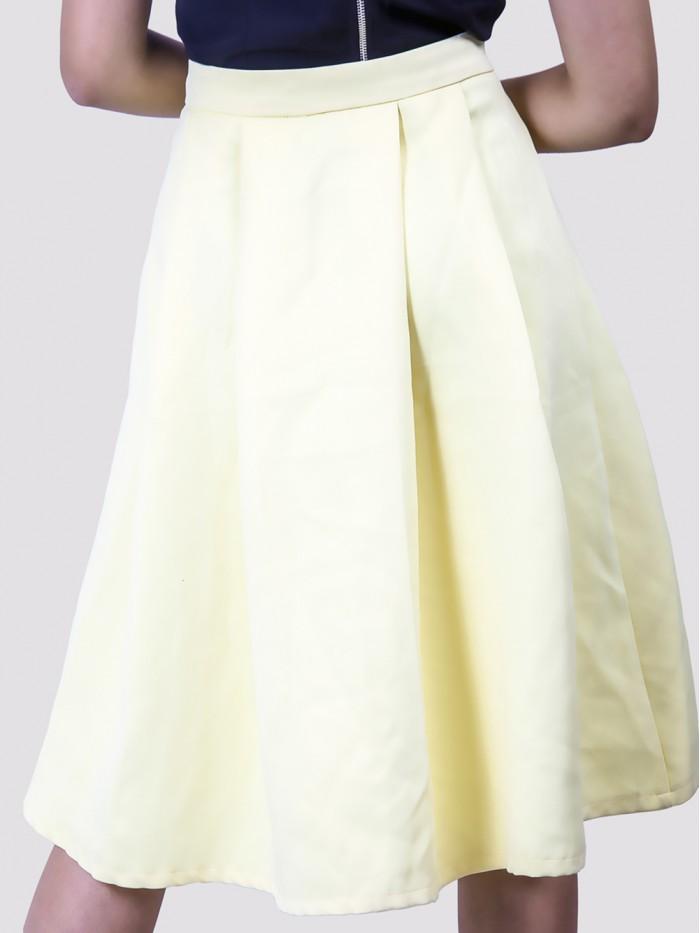 Pleated A line Skirt